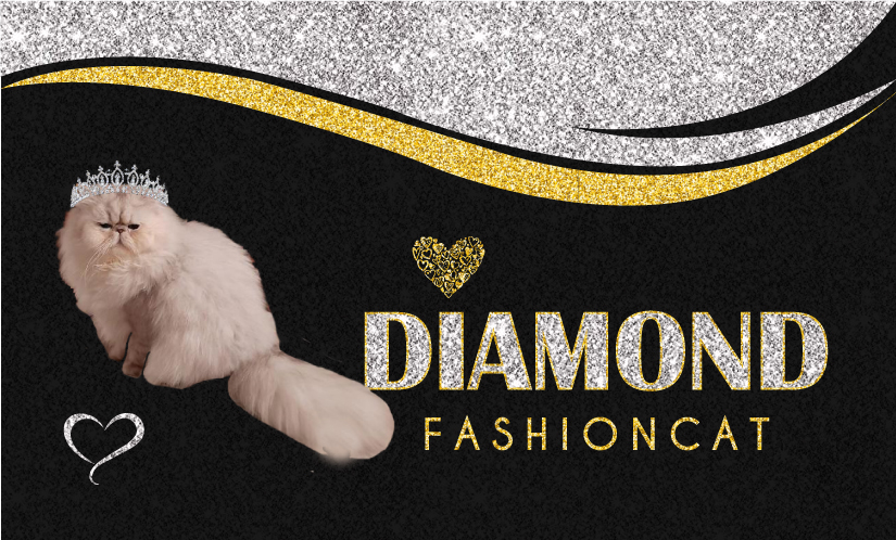 Diamond Fashioncat
